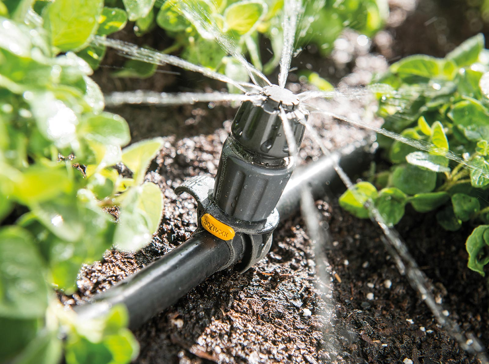 Hozelock Easy Drip System
